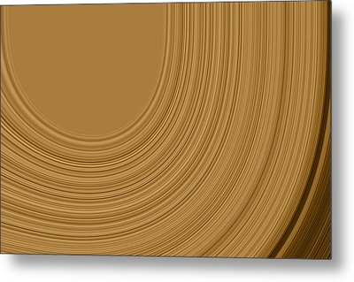 Earthy Swirls Metal Print by Bonnie Bruno
