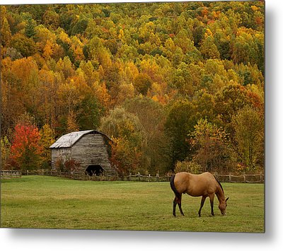 Ease Into Autumn Metal Print by J K York