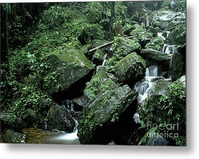 El Yunque National Forest Rocks And Waterfall Metal Print by Thomas R Fletcher