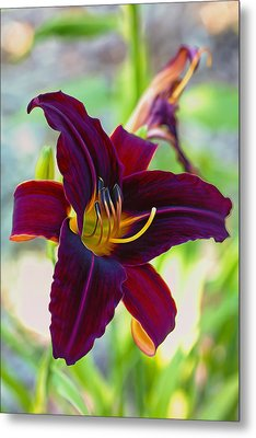 Electric Maroon Lily Metal Print by Bill Tiepelman