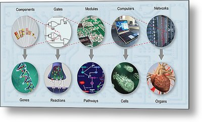 Electronic And Biologic Systems, Artwork Metal Print by Equinox Graphics