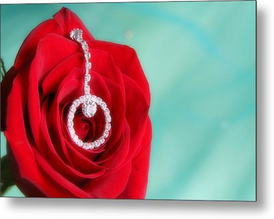 Elegance In Color Metal Print by Mark J Seefeldt