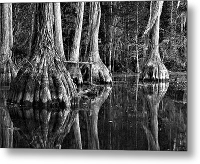 Metal Print featuring the photograph Elephant Feet by Dan Wells