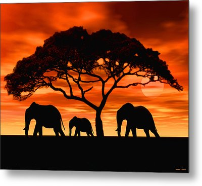 Metal Print featuring the digital art Elephant Sun Set by Walter Colvin