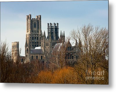 Metal Print featuring the photograph Ely Cathedral Scenic by Andrew  Michael