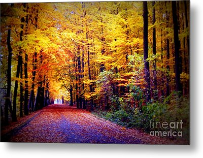Enchanted Fall Forest Metal Print by Carol Groenen