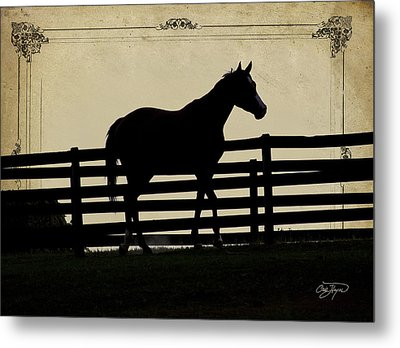End Of The Day In Georgia - Horse Lovers Must See - Artist Cris Hayes Metal Print by Cris Hayes