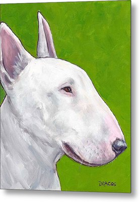 English Bull Terrier Profile On Green Metal Print by Dottie Dracos