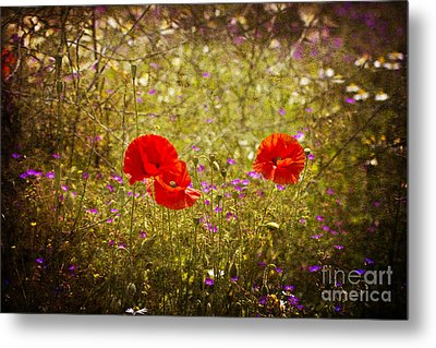 Metal Print featuring the photograph English Summer Meadow. by Clare Bambers - Bambers Images