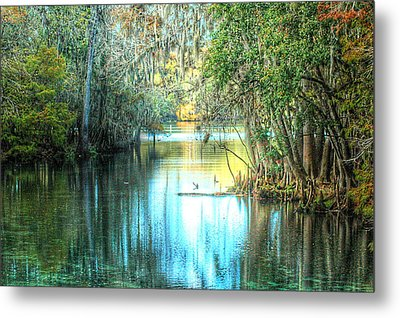 Entrance To Swanee Metal Print by Ronald T Williams