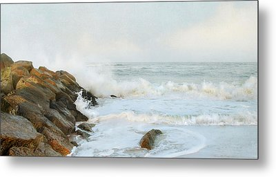 Metal Print featuring the photograph Epogee by Karen Lynch