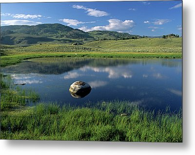 Erratic Boulder And Small Pond In Lamar Valley Metal Print by Altrendo Nature