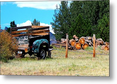 Estes Park Back Yard Metal Print