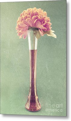 Estillo Vase - S01t04 Metal Print by Variance Collections