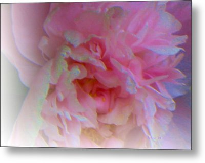 Ethereal Changing Mood Metal Print by Liz Evensen