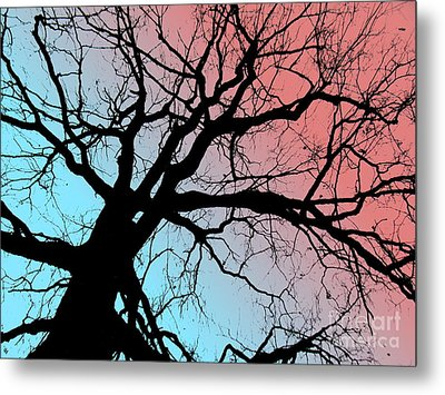 Evening Breaks Metal Print by Amy Sorrell