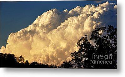 Evening Clouds Metal Print by Thomas R Fletcher