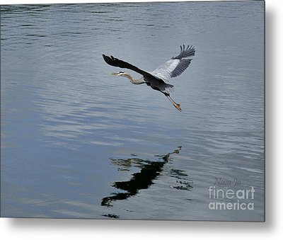 Metal Print featuring the photograph Evening Flight Reflection by Nava Thompson