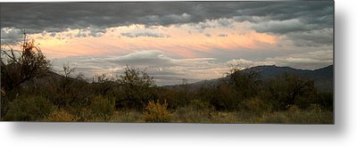 Evening In Tucson Metal Print by Kume Bryant