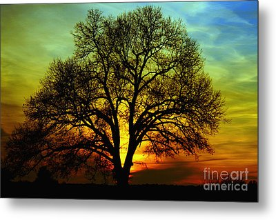 Evening Palette Metal Print
