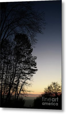Evening Silhouette At Sunset Metal Print by Bruno Santoro