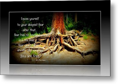 Expose Yourself Metal Print by Michelle Frizzell-Thompson