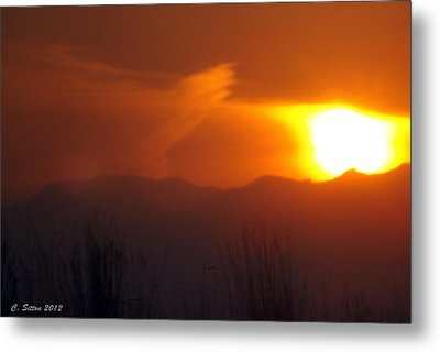 Eye In The Sky Metal Print by C Sitton