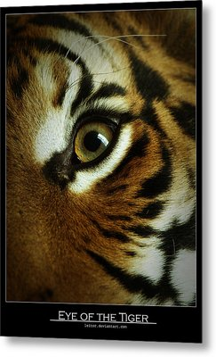 Eye Of The Tiger Metal Print by Leito R
