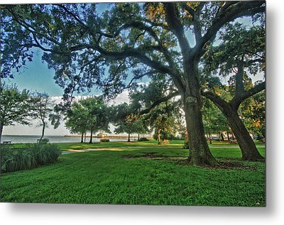 Fairhope Lower Park 4 Metal Print by Michael Thomas