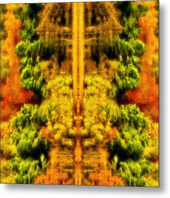 Metal Print featuring the photograph Fall Abstract by Meirion Matthias