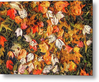 Fall Autumn Leaves On Water Metal Print by Randy Steele
