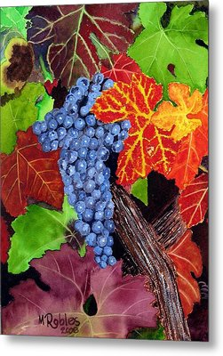Fall Cabernet Sauvignon Grapes Metal Print by Mike Robles