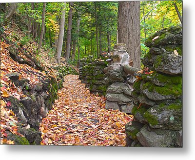 Fall Carpet Metal Print