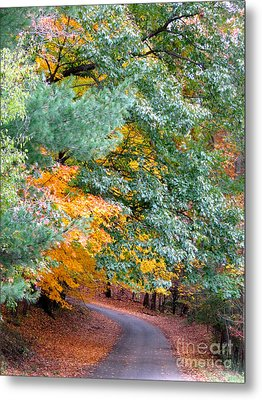 Fall Colored Country Road Metal Print by Joan McArthur