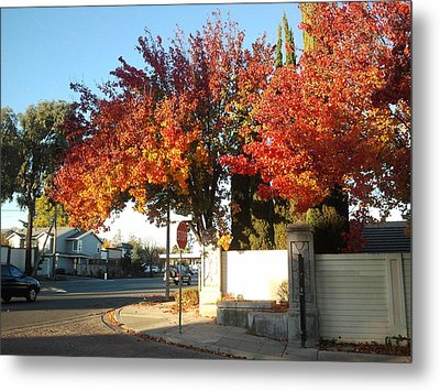 Fall Colors 2 Metal Print by Remegio Onia