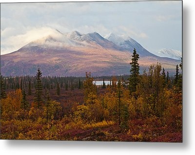 Fall Colors Of Alaska Metal Print