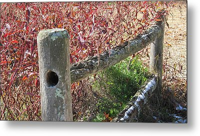 Fall Colors On The Fence Metal Print
