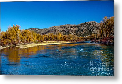 Fall Colors On The Snake River Metal Print by Robert Bales