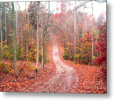 Metal Print featuring the photograph Fall Drive by Gretchen Allen