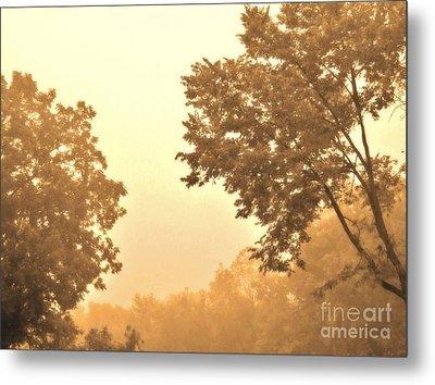 Fall Foggy Morning Metal Print by Marsha Heiken