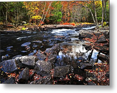 Fall Forest And River Landscape Metal Print by Elena Elisseeva