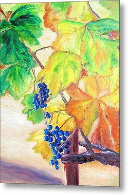 Fall Grapes Metal Print by Barbara Anna Knauf