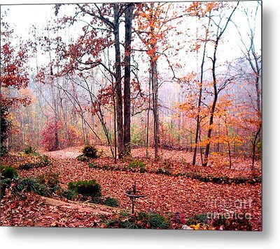 Metal Print featuring the photograph Fall by Gretchen Allen