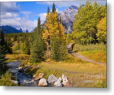 Fall In Banff National Park Metal Print by Bob and Nancy Kendrick