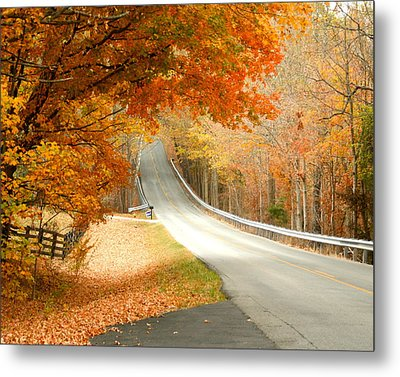Fall In Kentucky Metal Print by Sylvia Hart