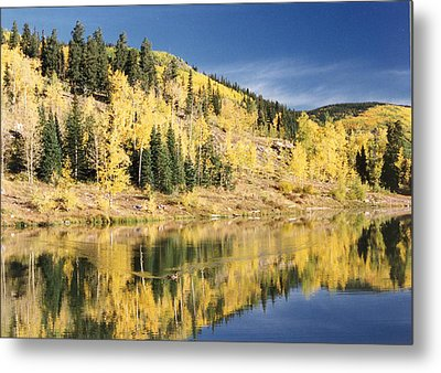 Fall Mirror Image Metal Print by Stacey Grant