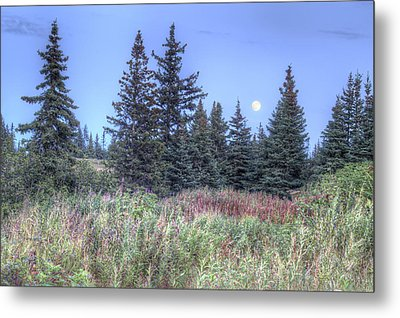 Metal Print featuring the photograph Fall Moon by Michele Cornelius