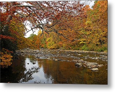 Metal Print featuring the photograph Fall On Laurel Hill Creek by Dan Myers