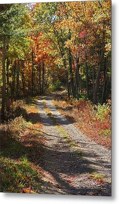 Fall On The Wyrick Trail Metal Print by Denise Romano