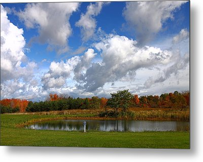 Fall Pond Metal Print by Kevin Schrader